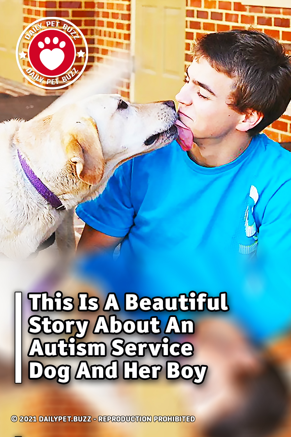 This Is A Beautiful Story About An Autism Service Dog And Her Boy