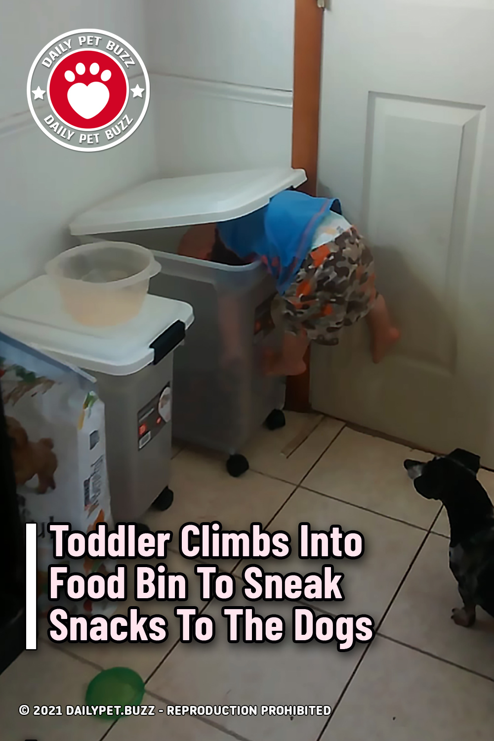 Toddler Climbs Into Food Bin To Sneak Snacks To The Dogs