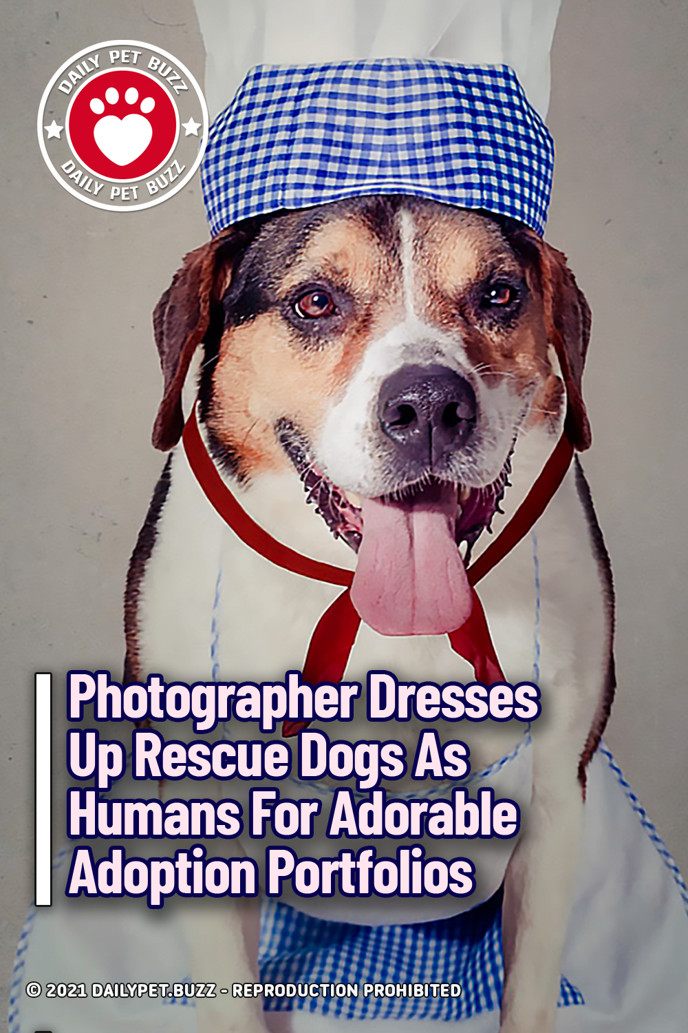 Photographer Dresses Up Rescue Dogs As Humans For Adorable Adoption Portfolios