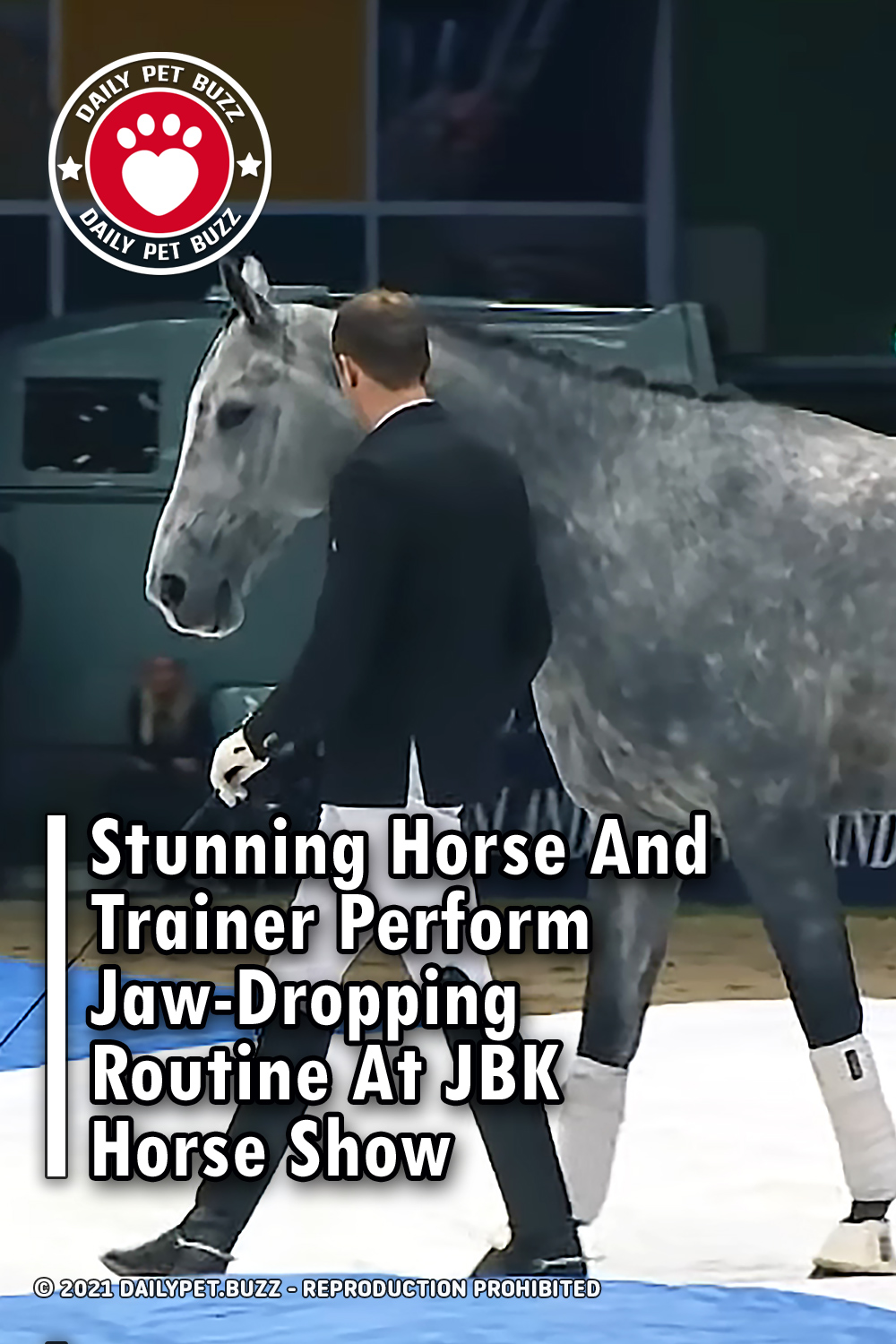 Stunning Horse And Trainer Perform Jaw-Dropping Routine At JBK Horse Show