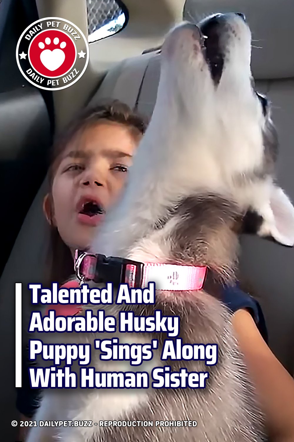 Talented And Adorable Husky Puppy \'Sings\' Along With Human Sister