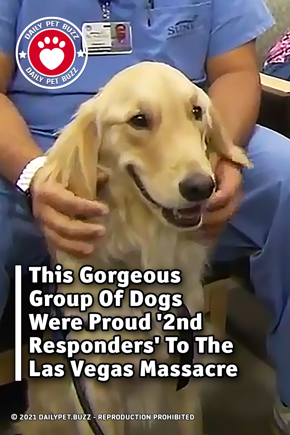 This Gorgeous Group Of Dogs Were Proud \'2nd Responders\' To The Las Vegas Massacre