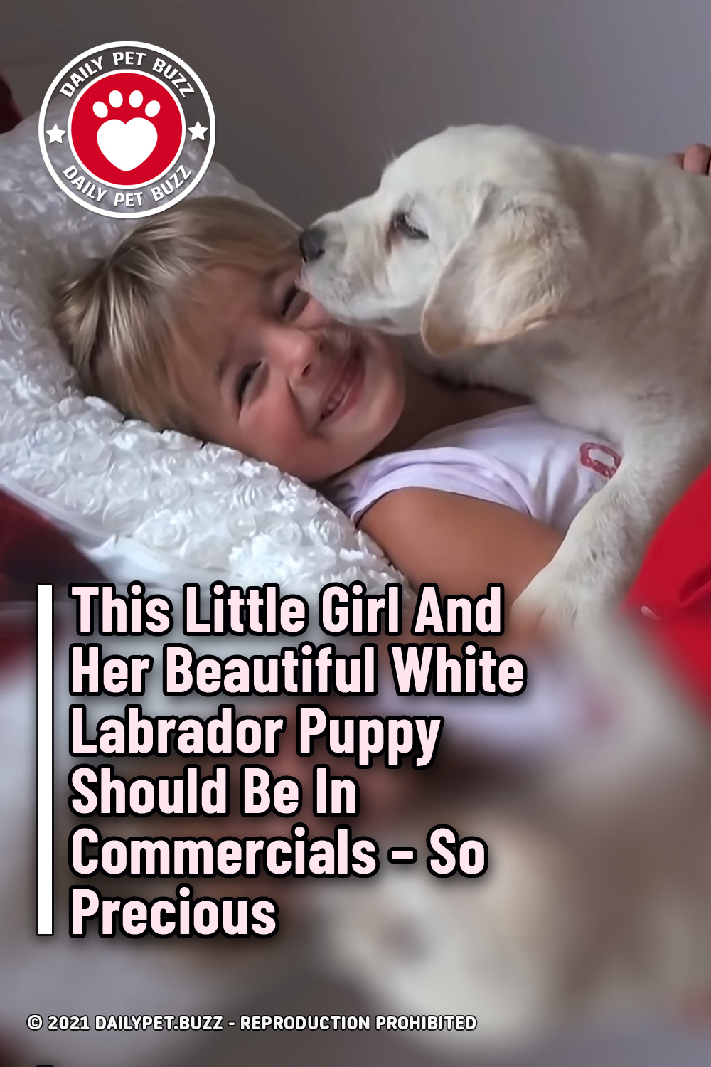 This Little Girl And Her Beautiful White Labrador Puppy Should Be In Commercials – So Precious