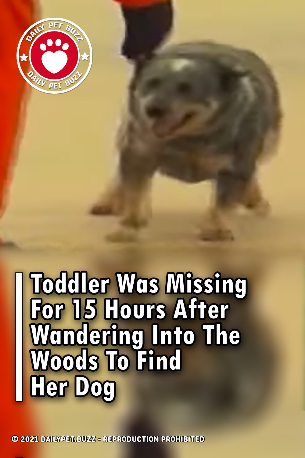 Toddler Was Missing For 15 Hours After Wandering Into The Woods To Find Her Dog