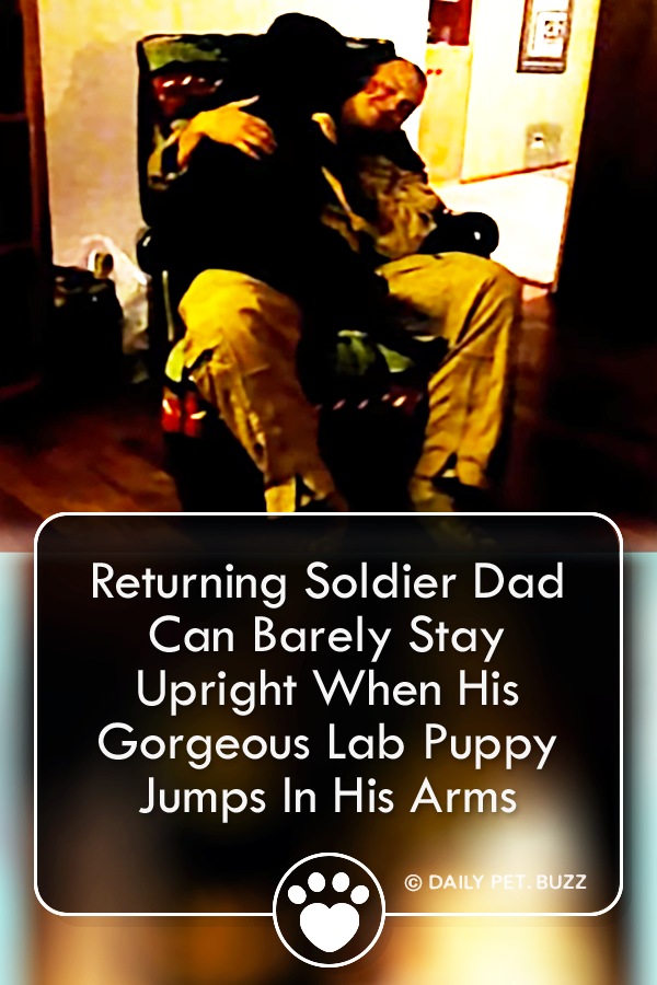Returning Soldier Dad Can Barely Stay Upright When His Gorgeous Lab Puppy Jumps In His Arms