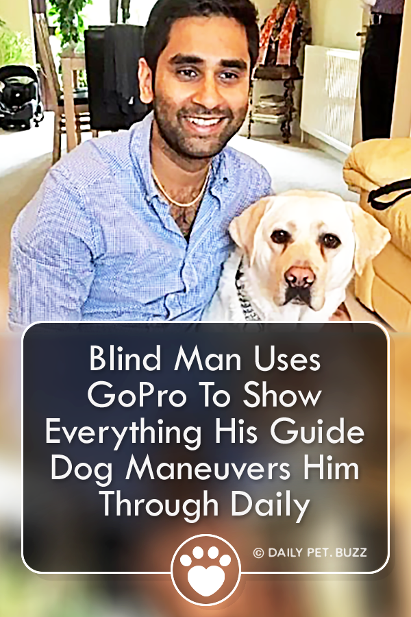 Blind Man Uses GoPro To Show Everything His Guide Dog Maneuvers Him Through Daily