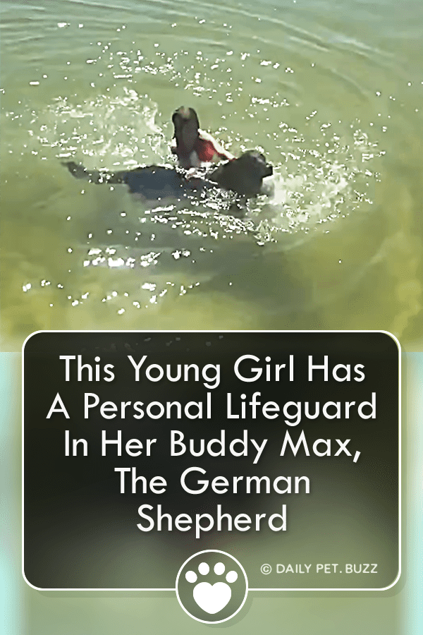 This Young Girl Has A Personal Lifeguard In Her Buddy Max, The German Shepherd