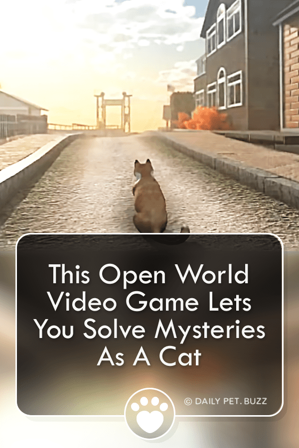 This Open World Video Game Lets You Solve Mysteries As A Cat