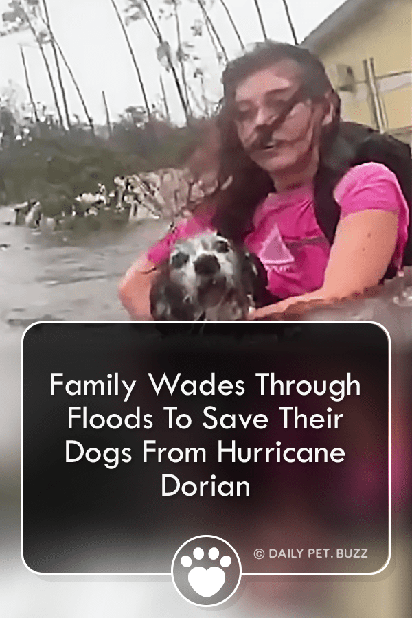 Family Wades Through Floods To Save Their Dogs From Hurricane Dorian