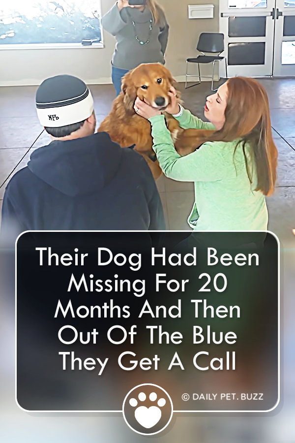 Their Dog Had Been Missing For 20 Months And Then Out Of The Blue They Get A Call