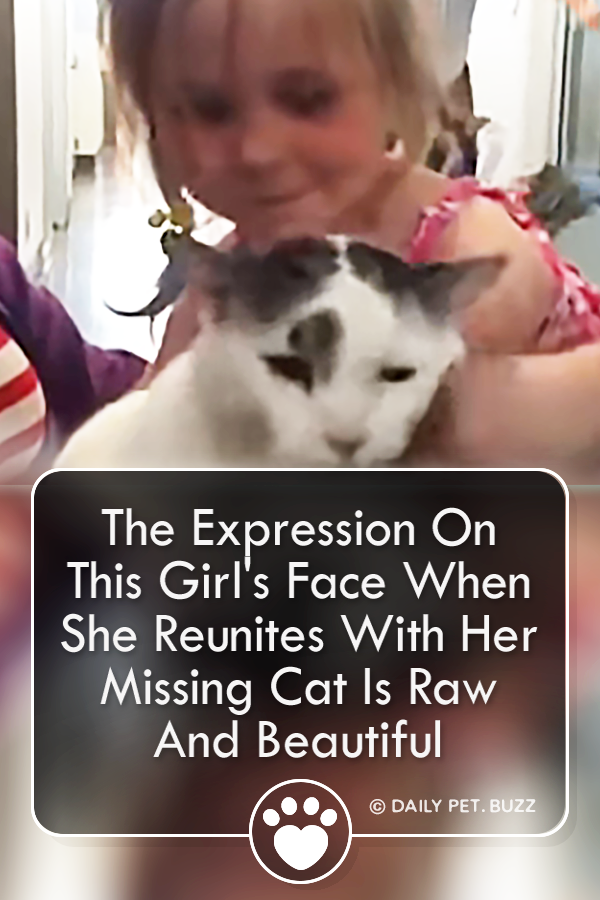 The Expression On This Girl\'s Face When She Reunites With Her Missing Cat Is Raw And Beautiful