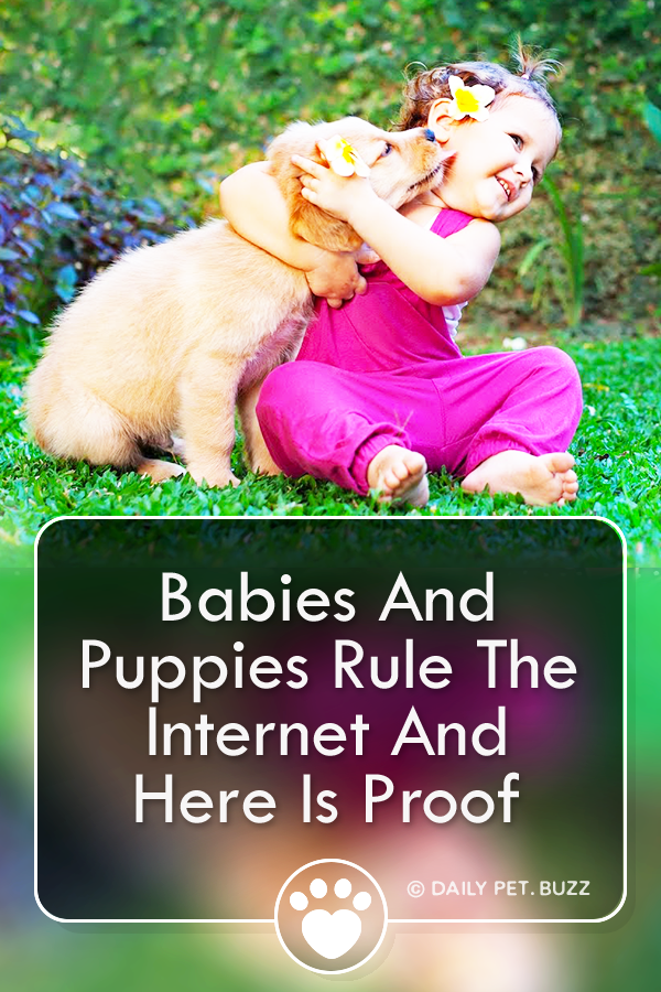 Babies And Puppies Rule The Internet And Here Is Proof