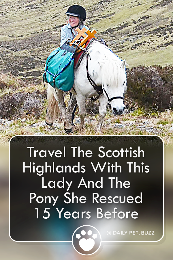 Travel The Scottish Highlands With This Lady And The Pony She Rescued 15 Years Before