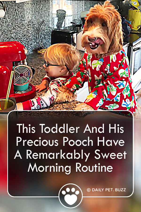 This Toddler And His Precious Pooch Have A Remarkably Sweet Morning Routine
