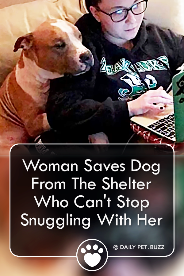Woman Saves Dog From The Shelter Who Can\'t Stop Snuggling With Her