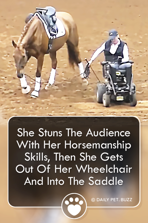 She Stuns The Audience With Her Horsemanship Skills, Then She Gets Out Of Her Wheelchair And Into The Saddle