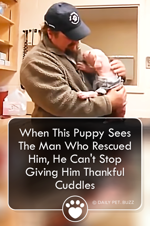 When This Puppy Sees The Man Who Rescued Him, He Can\'t Stop Giving Him Thankful Cuddles