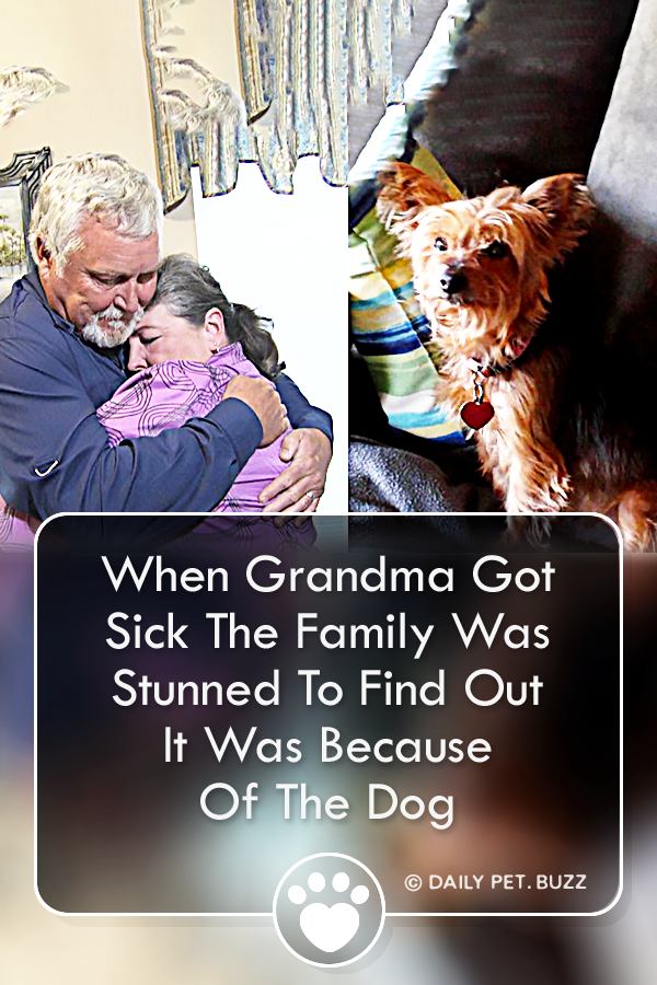 When Grandma Got Sick The Family Was Stunned To Find Out It Was Because Of The Dog