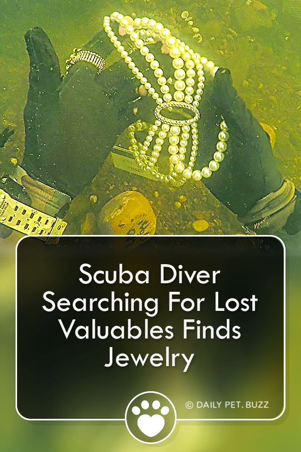 Scuba Diver Searching For Lost Valuables Finds Jewelry