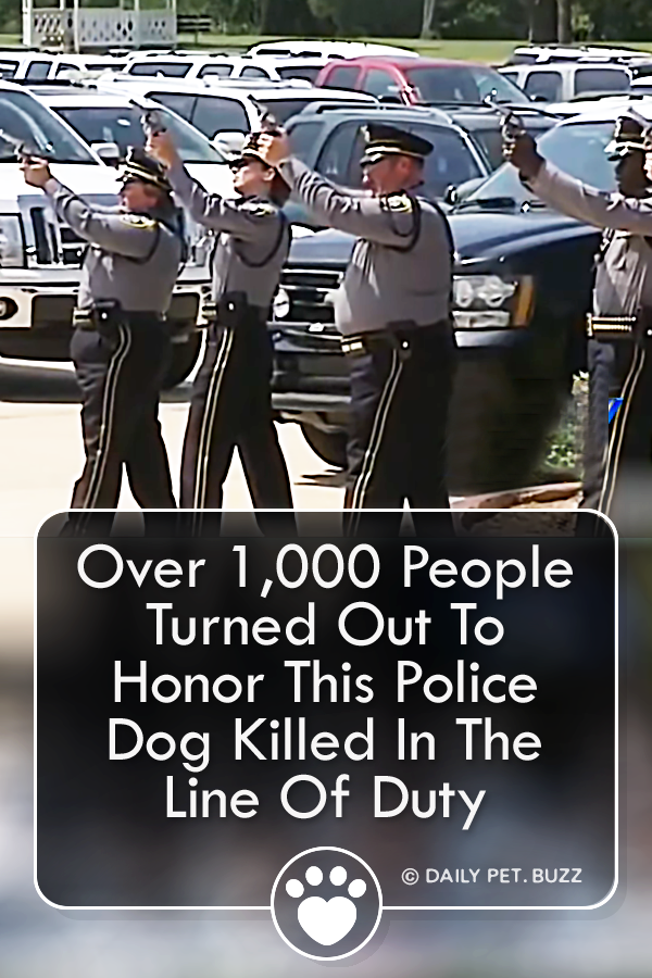 Over 1,000 People Turned Out To Honor This Police Dog Killed In The Line Of Duty