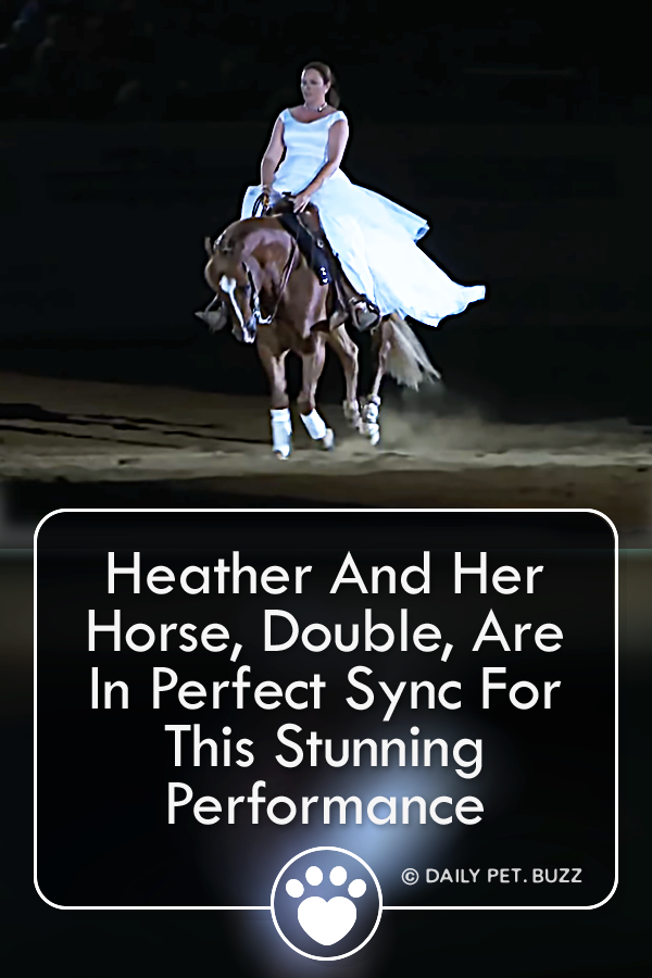 Heather And Her Horse, Double, Are In Perfect Sync For This Stunning Performance