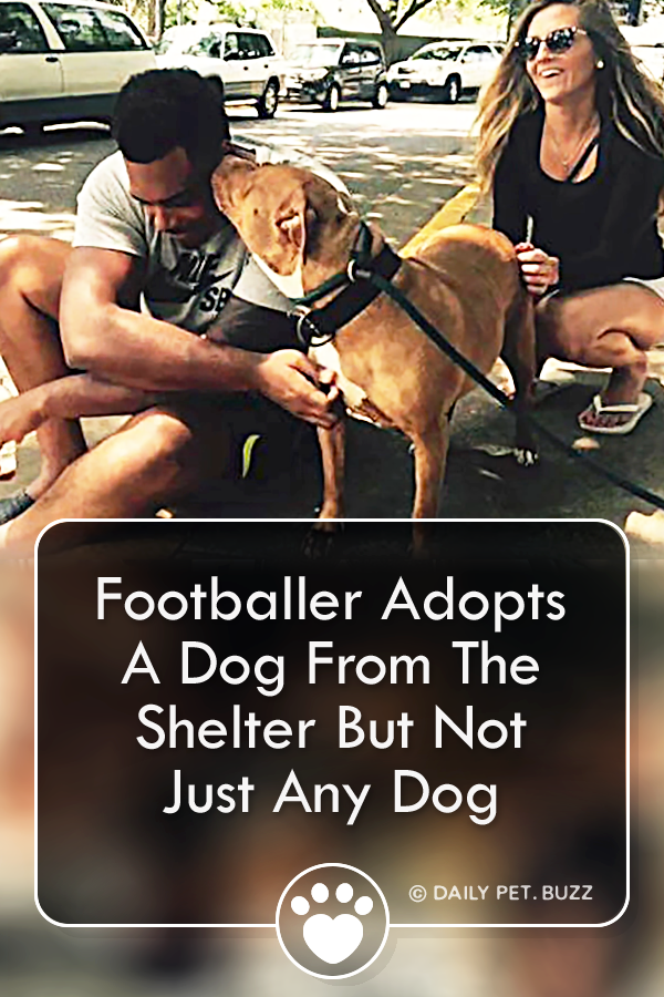 Footballer Adopts A Dog From The Shelter But Not Just Any Dog