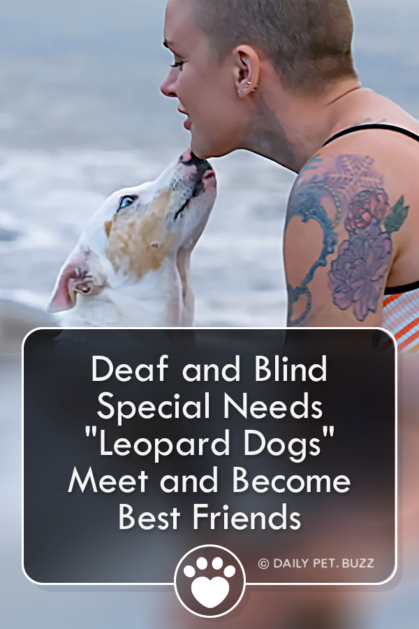 Deaf and Blind Special Needs \