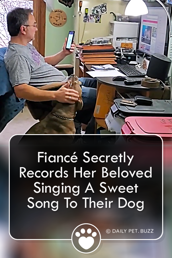 Fiancé Secretly Records Her Beloved Singing A Sweet Song To Their Dog