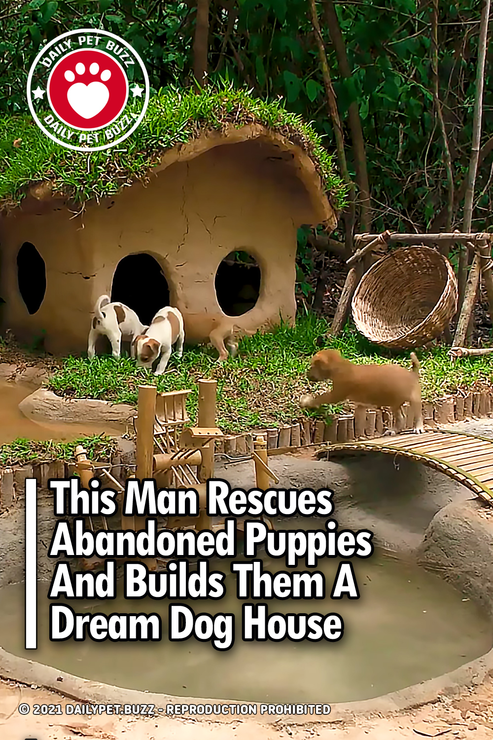 This Man Rescues Abandoned Puppies And Builds Them A Dream Dog House