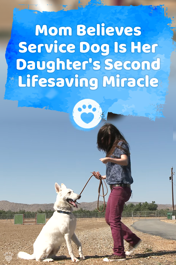 Mom Believes Service Dog Is Her Daughter\'s Second Lifesaving Miracle