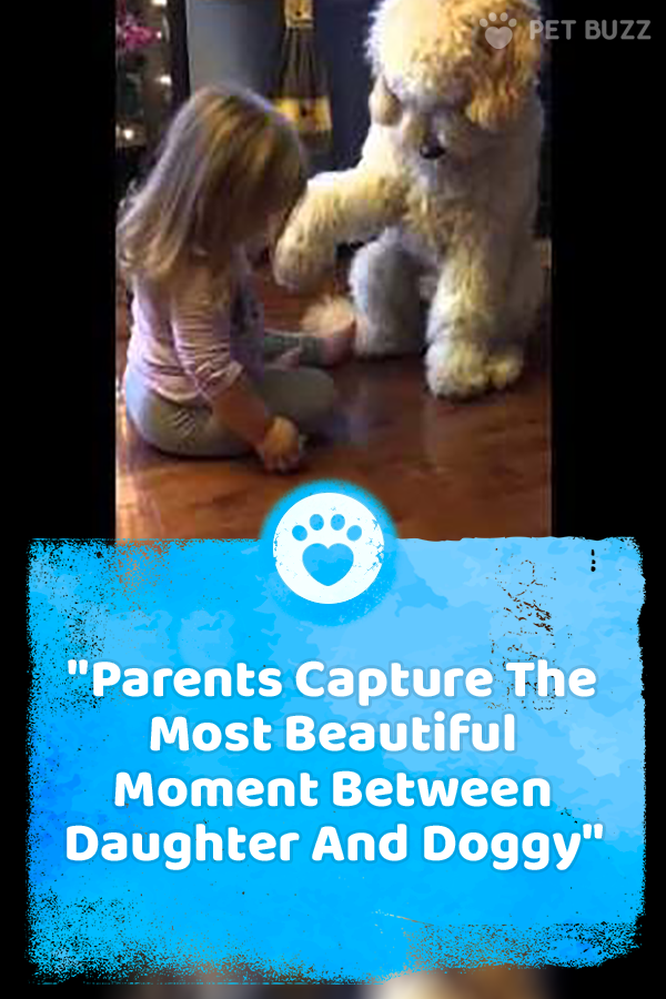Parents Capture The Most Beautiful Moment Between Daughter And Doggy