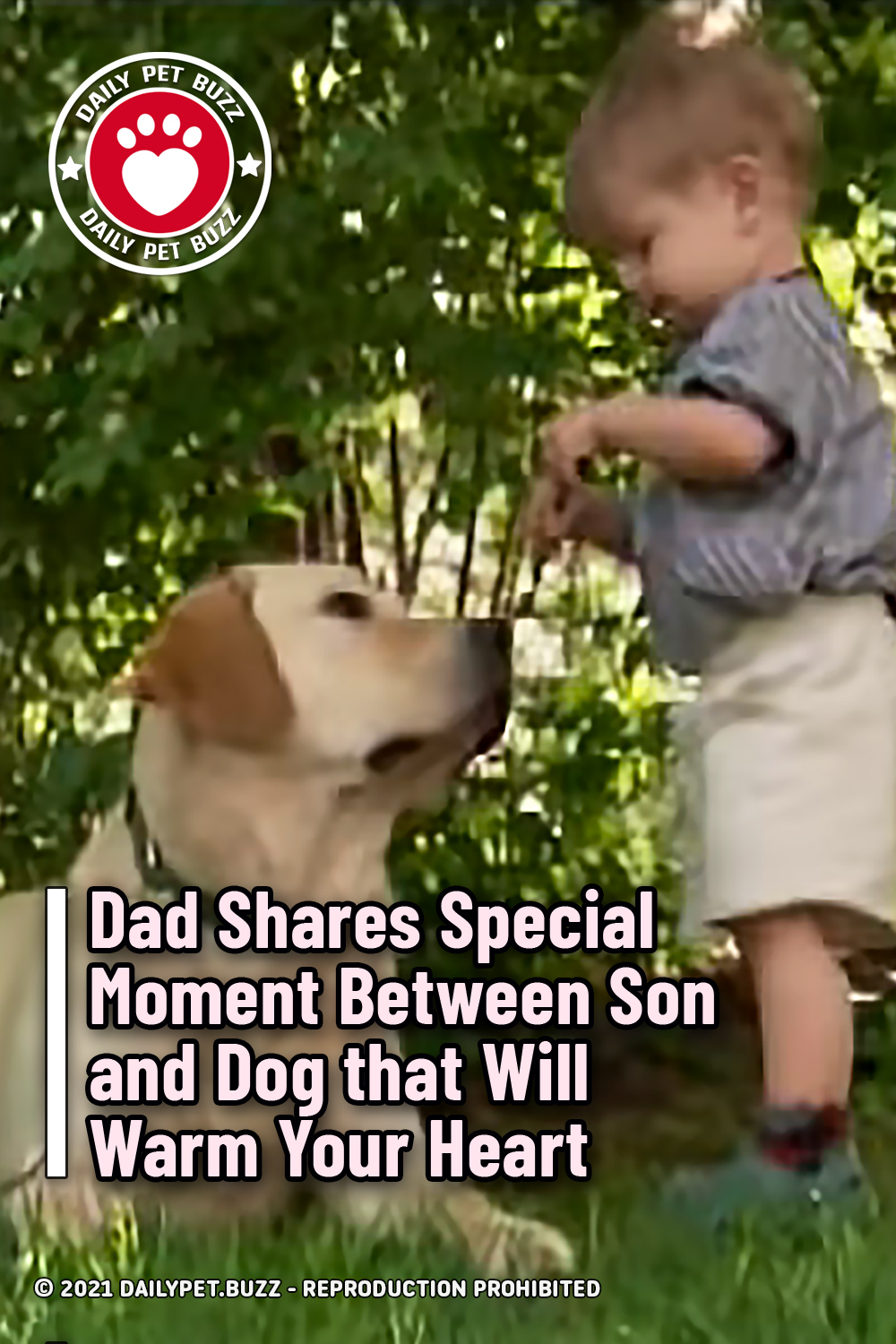 Dad Shares Special Moment Between Son and Dog that Will Warm Your Heart