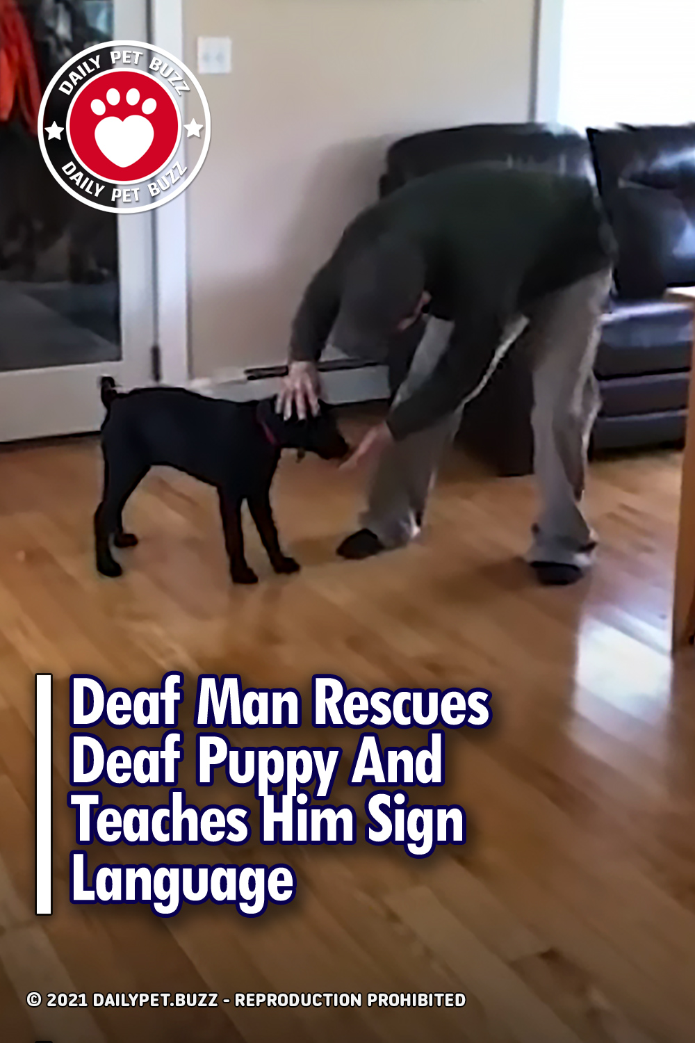 Deaf Man Rescues Deaf Puppy And Teaches Him Sign Language