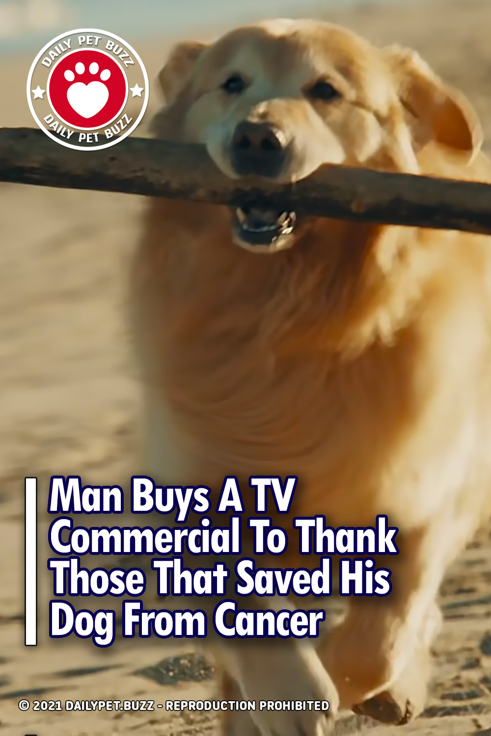 Man Buys A TV Commercial To Thank Those That Saved His Dog From Cancer