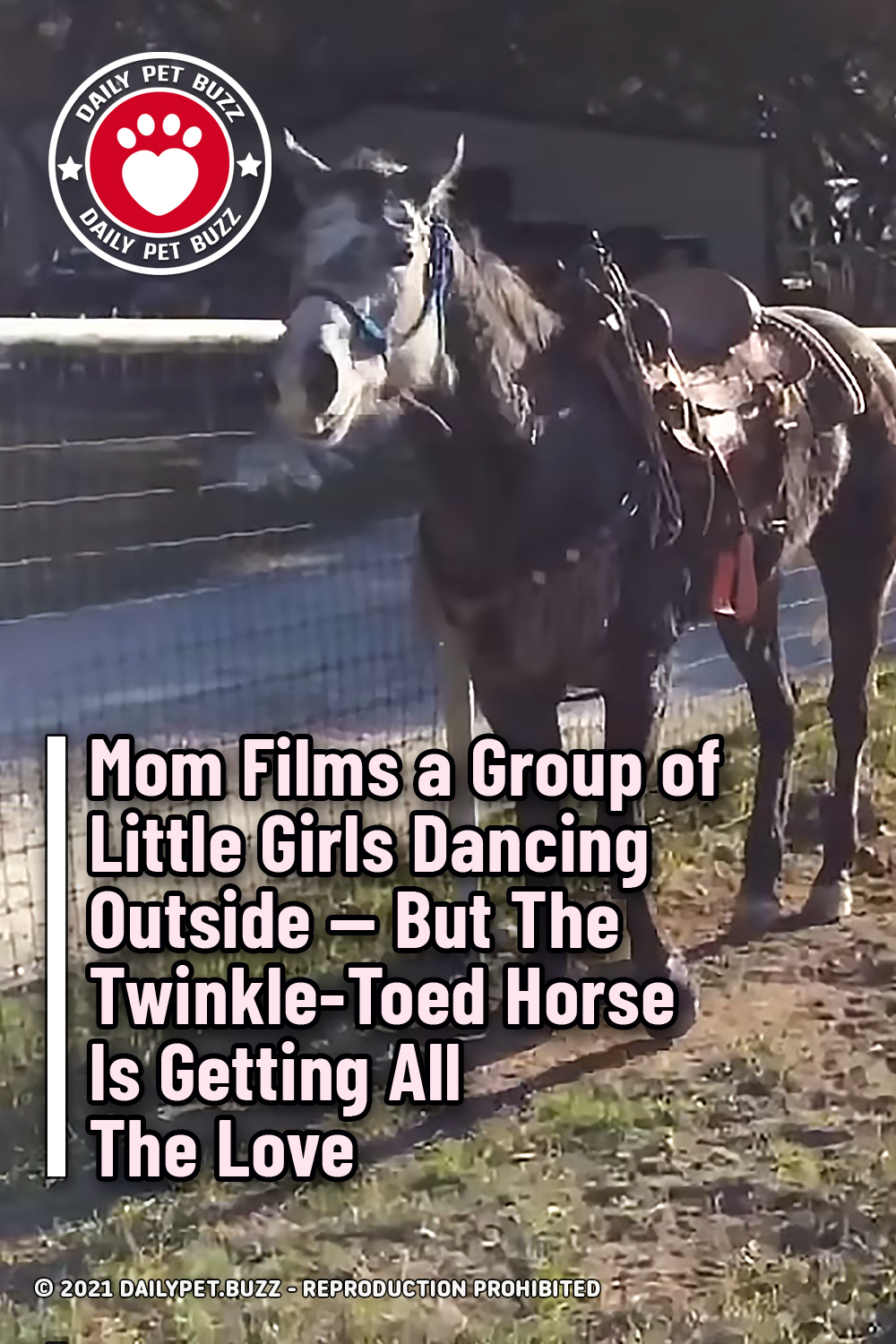 Mom Films a Group of Little Girls Dancing Outside — But The Twinkle-Toed Horse Is Getting All The Love