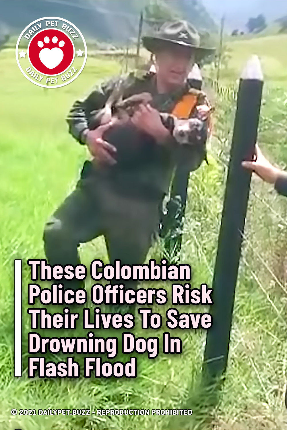 These Colombian Police Officers Risk Their Lives To Save Drowning Dog In Flash Flood