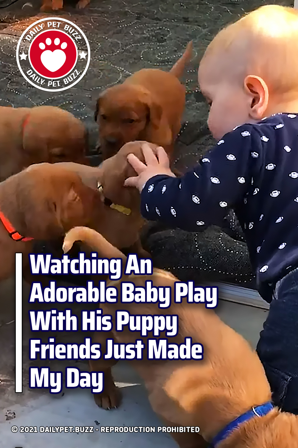 Watching An Adorable Baby Play With His Puppy Friends Just Made My Day