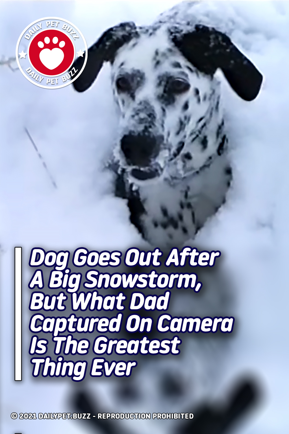 Dog Goes Out After A Big Snowstorm, But What Dad Captured On Camera Is The Greatest Thing Ever