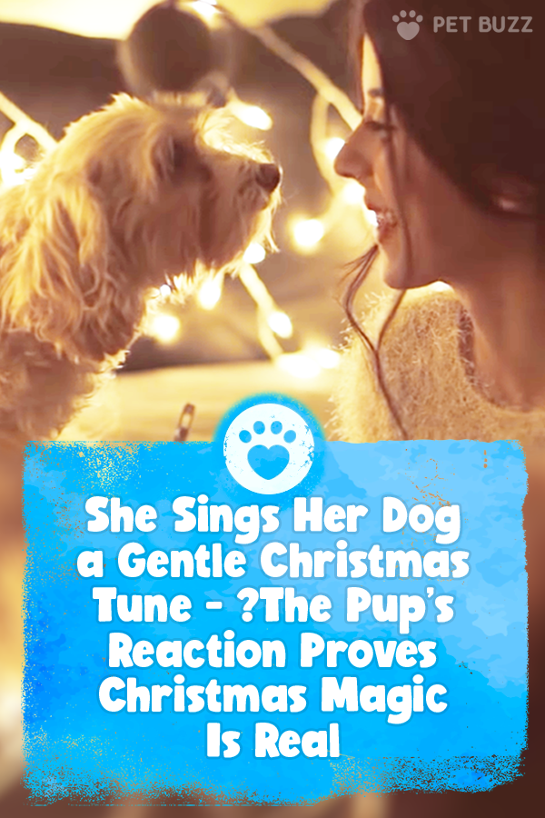 She Sings Her Dog a Gentle Christmas Tune - 