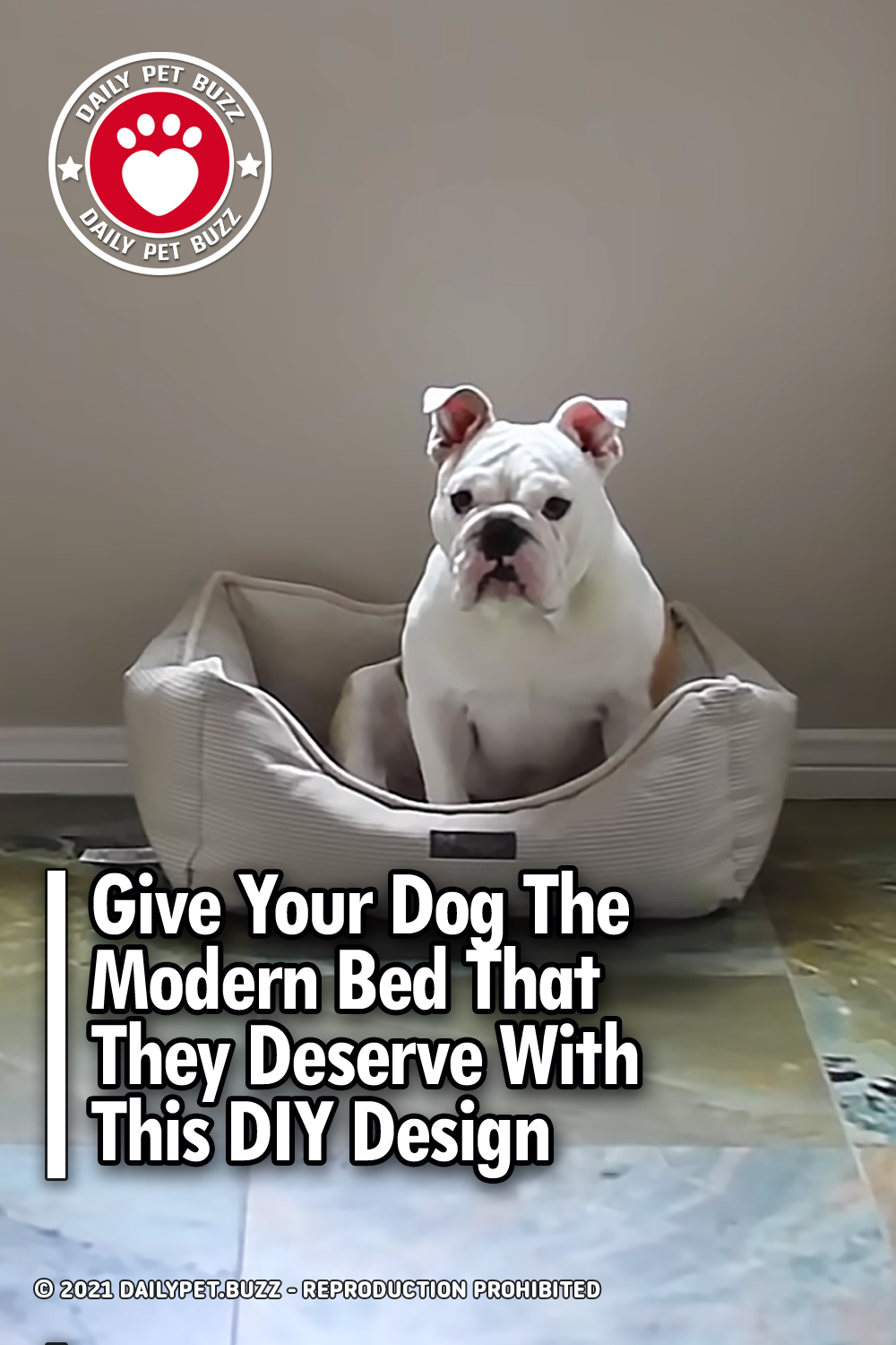 Give Your Dog The Modern Bed That They Deserve With This DIY Design