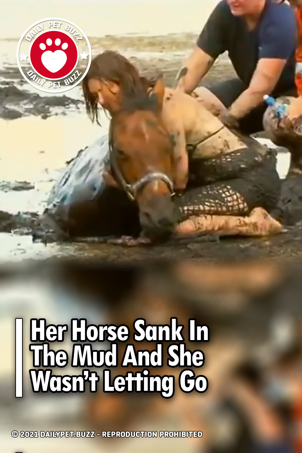 Her Horse Sank In The Mud And She Wasn't Letting Go