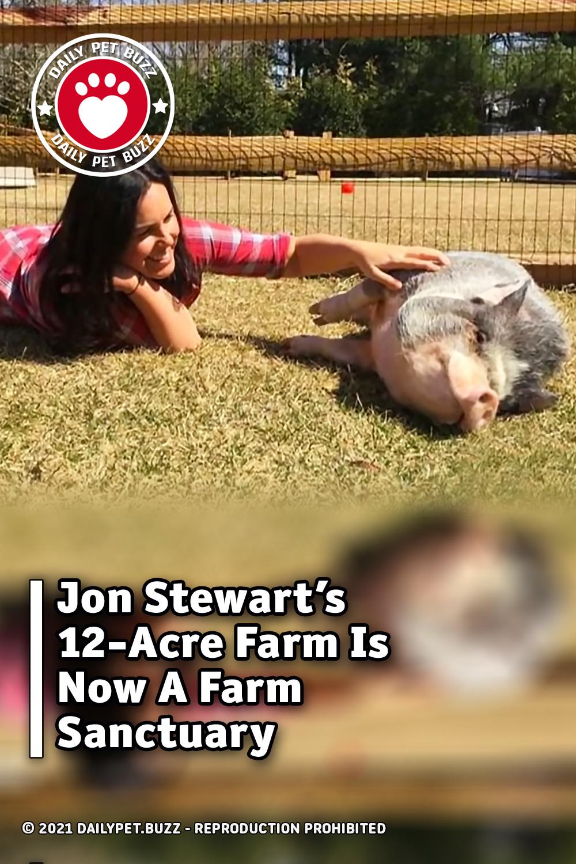 Jon Stewart's 12-Acre Farm Is Now A Farm Sanctuary