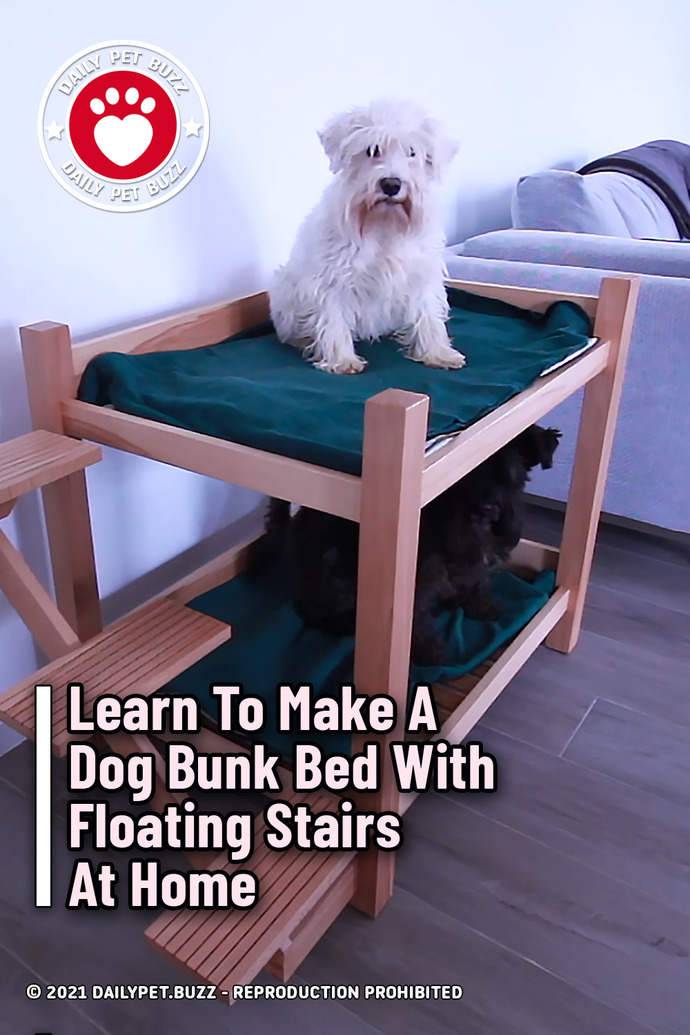 Learn To Make A Dog Bunk Bed With Floating Stairs At Home