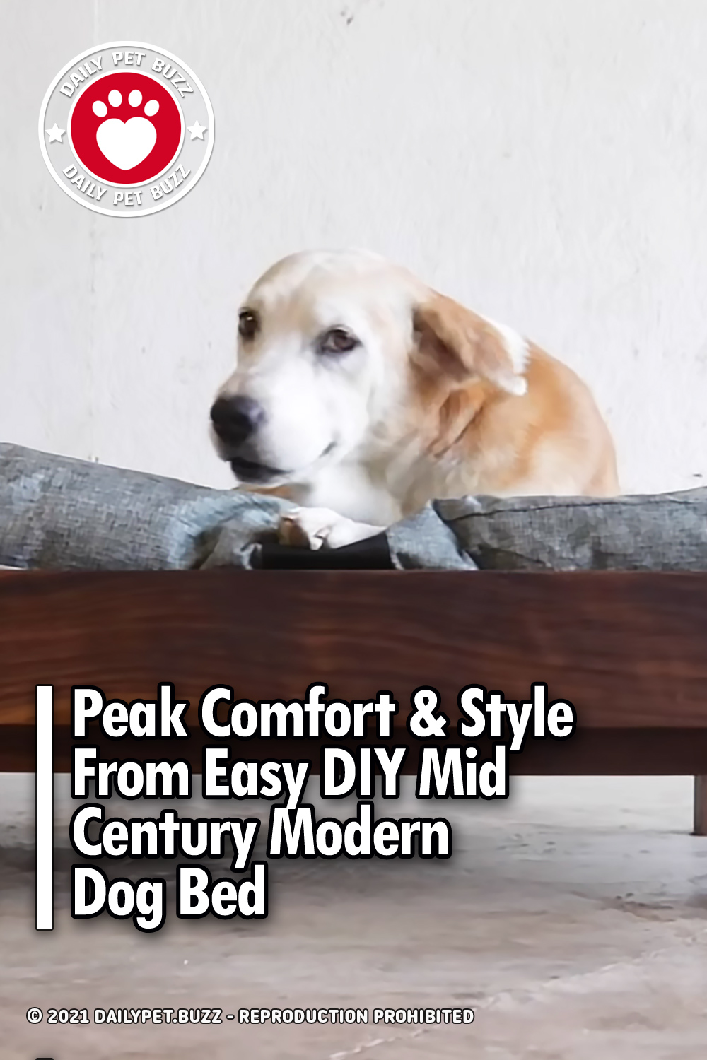 Peak Comfort & Style From Easy DIY Mid Century Modern Dog Bed