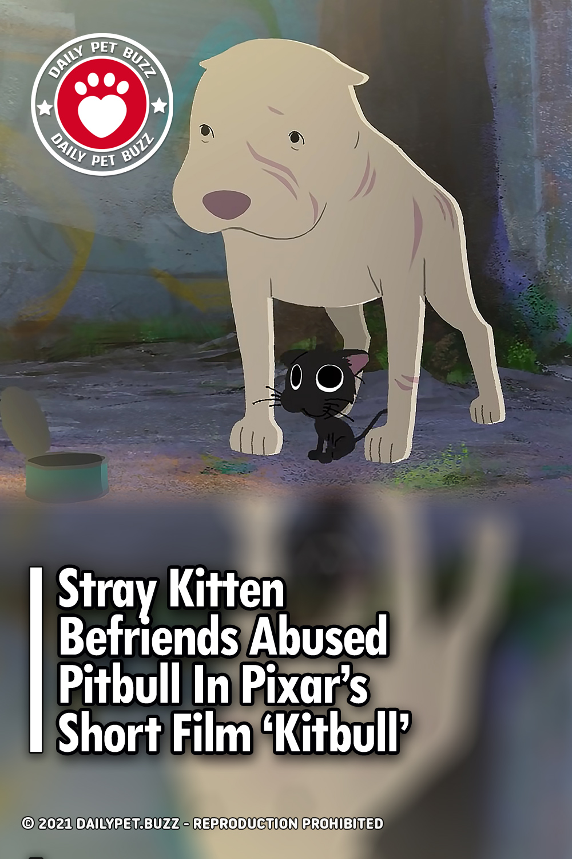 Stray Kitten Befriends Abused Pitbull In Pixar's Short Film 'Kitbull'