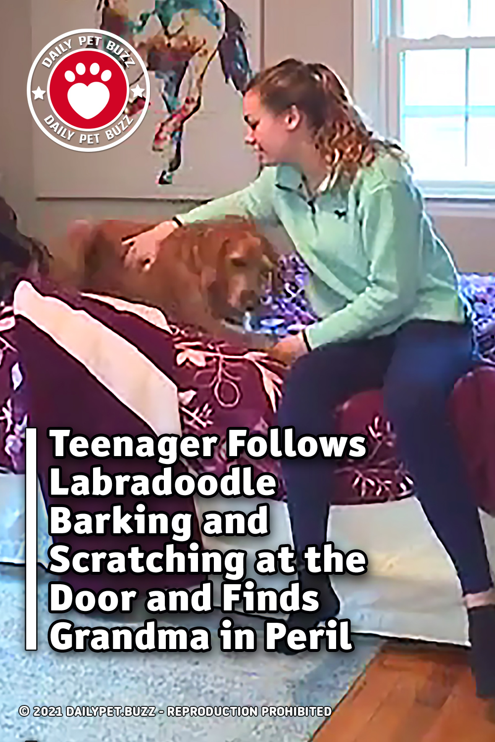 Teenager Follows Labradoodle Barking and Scratching at the Door and Finds Grandma in Peril