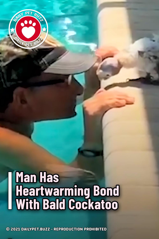 Man Has Heartwarming Bond With Bald Cockatoo