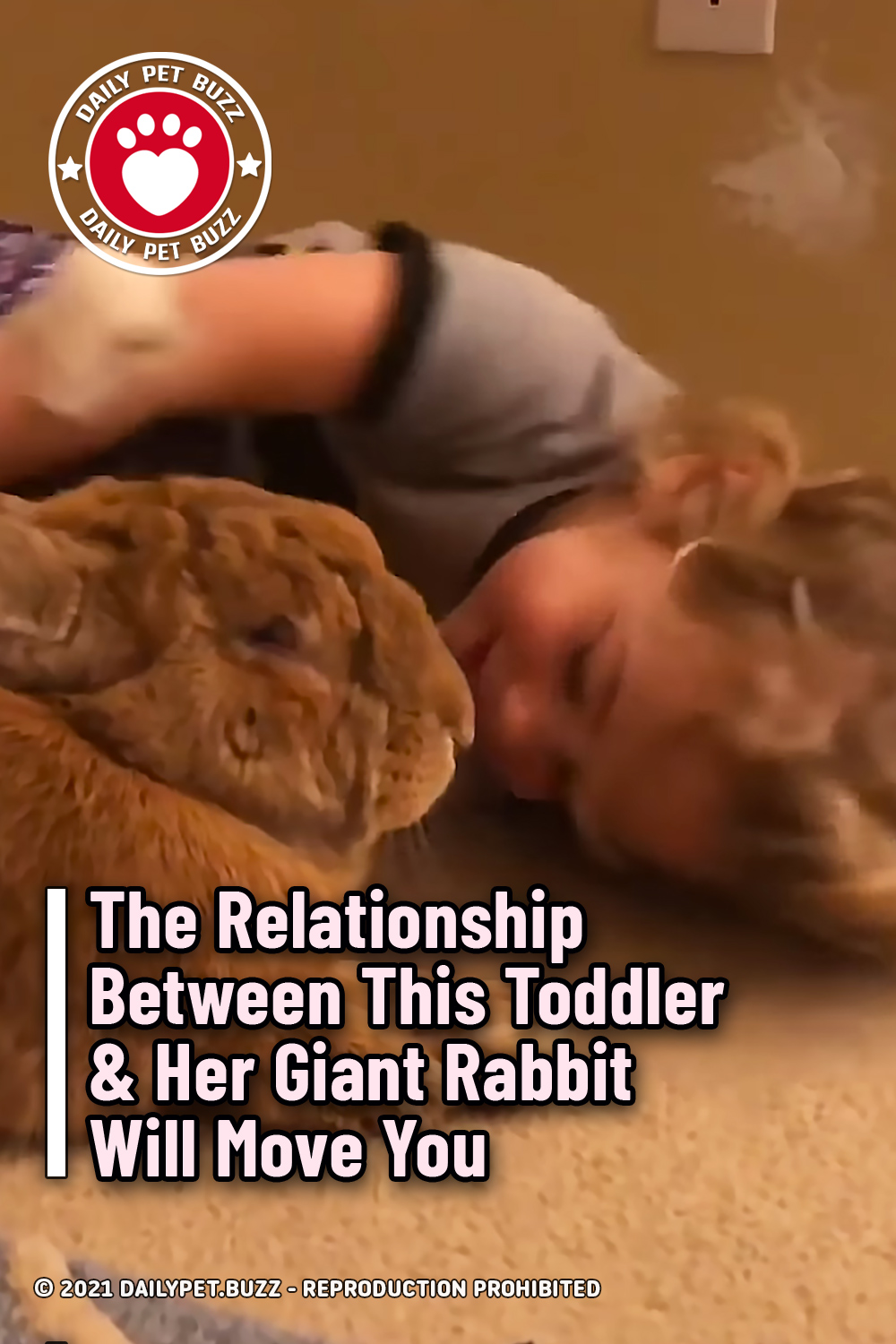 The Relationship Between This Toddler & Her Giant Rabbit Will Move You