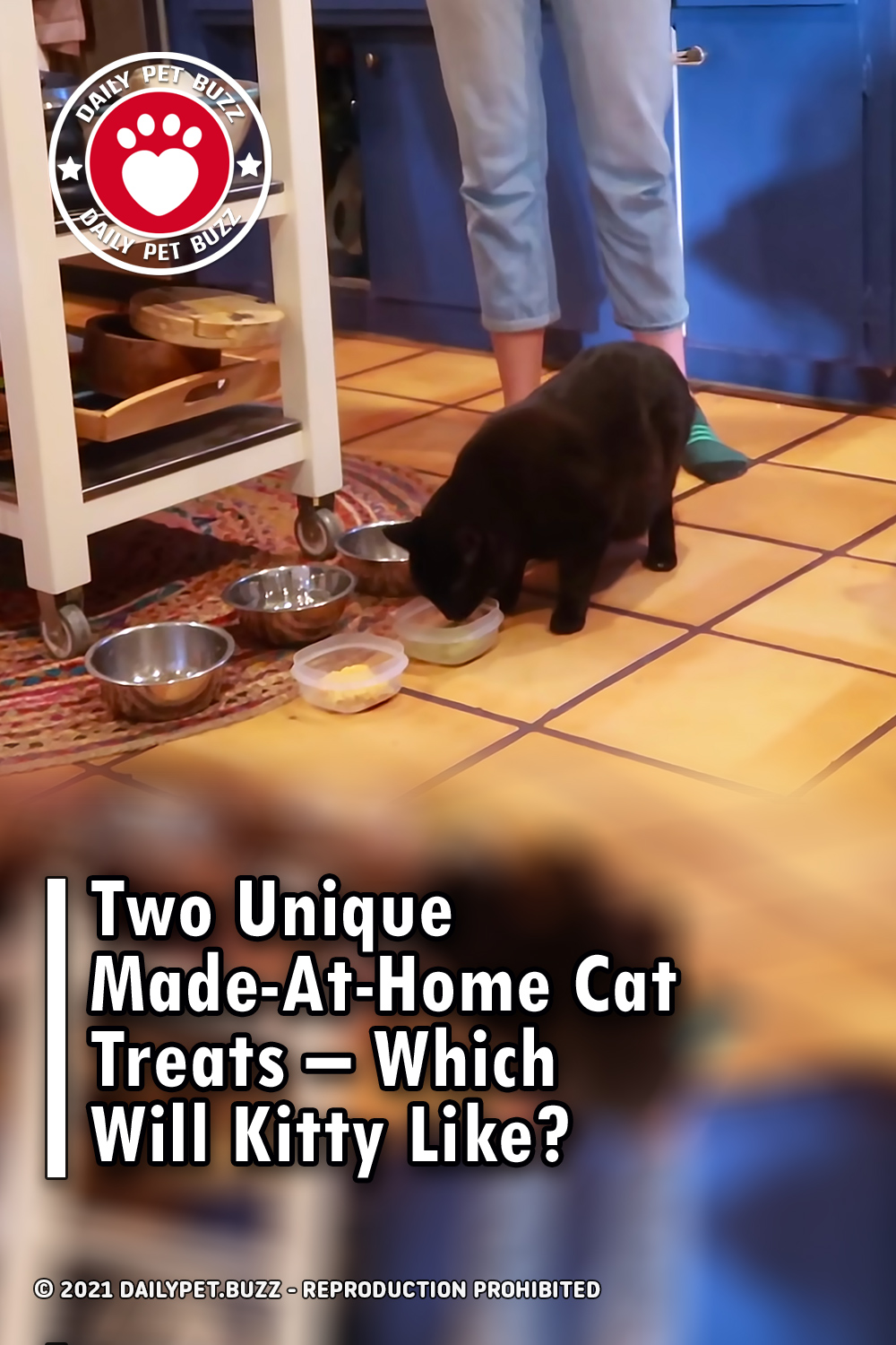 Two Unique Made-At-Home Cat Treats - Which Will Kitty Like?