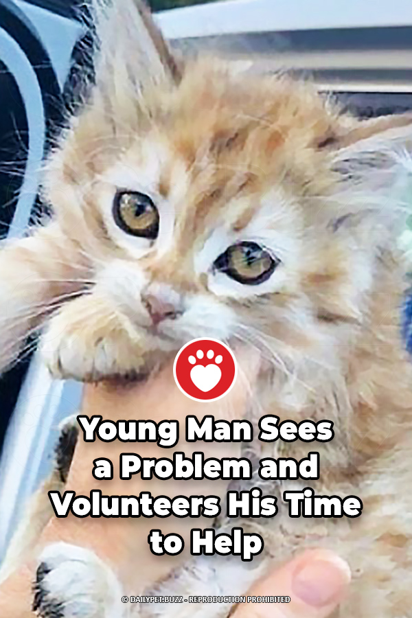 Young Man Sees a Problem and Volunteers His Time to Help